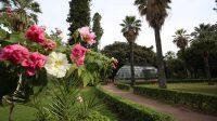 giardino-inglese-2.jpg