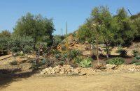 Giardino-Botanico-3.jpg