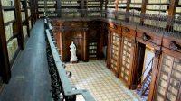 Biblioteca Lucchesiana 1.jpg