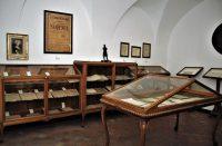Museo-Belliniano-3.jpg