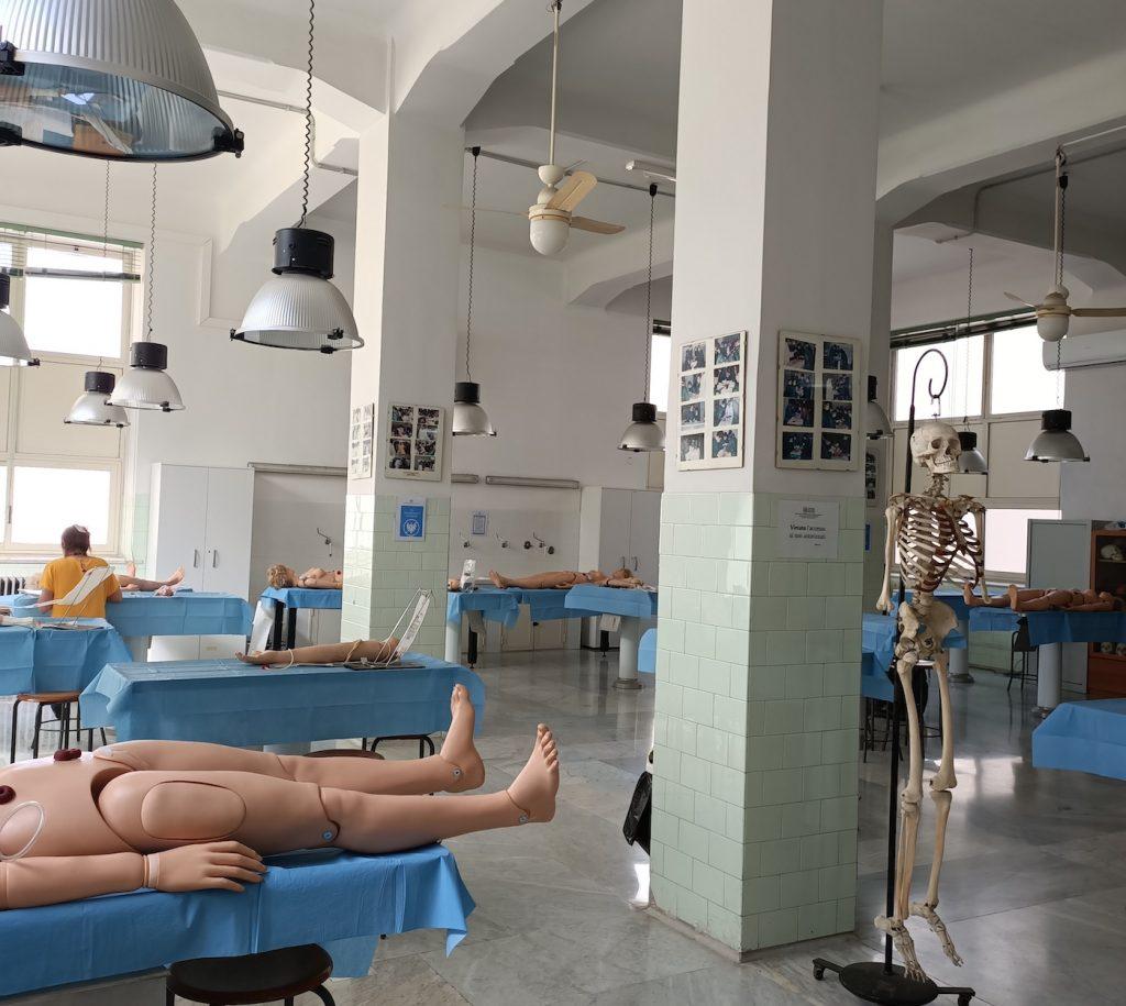 Collezione di anatomia umana.jpg