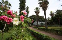 69 giardino inglese.JPG