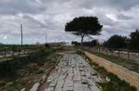 Parco-archeologico-5.jpg