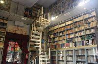 Biblioteca-Fardelliana-3.jpg